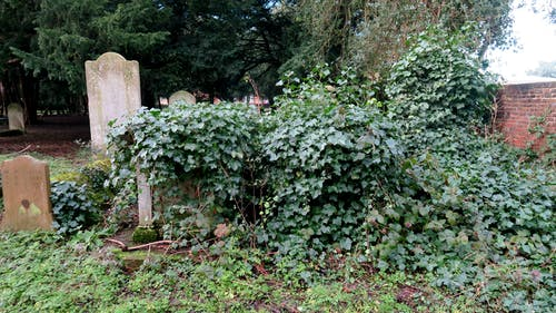 Free stock photo of church, gravestone, headstone
