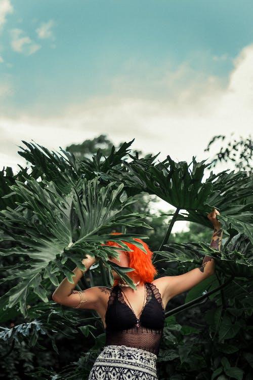 Foto stok gratis alam, anggun, anonim