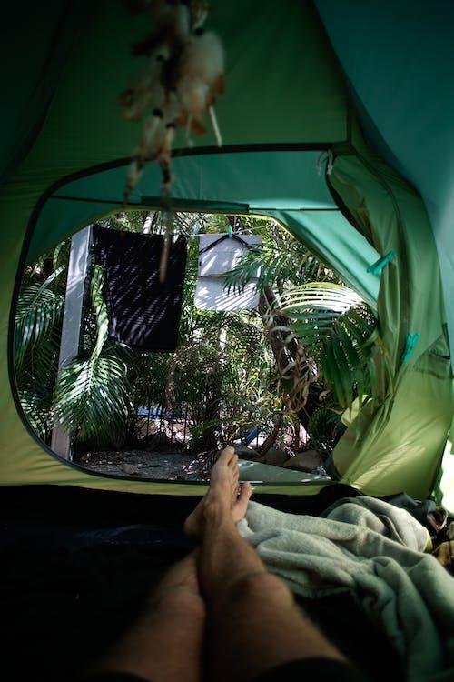 呎, 垂直拍摄, 帳篷 的 免费素材图片