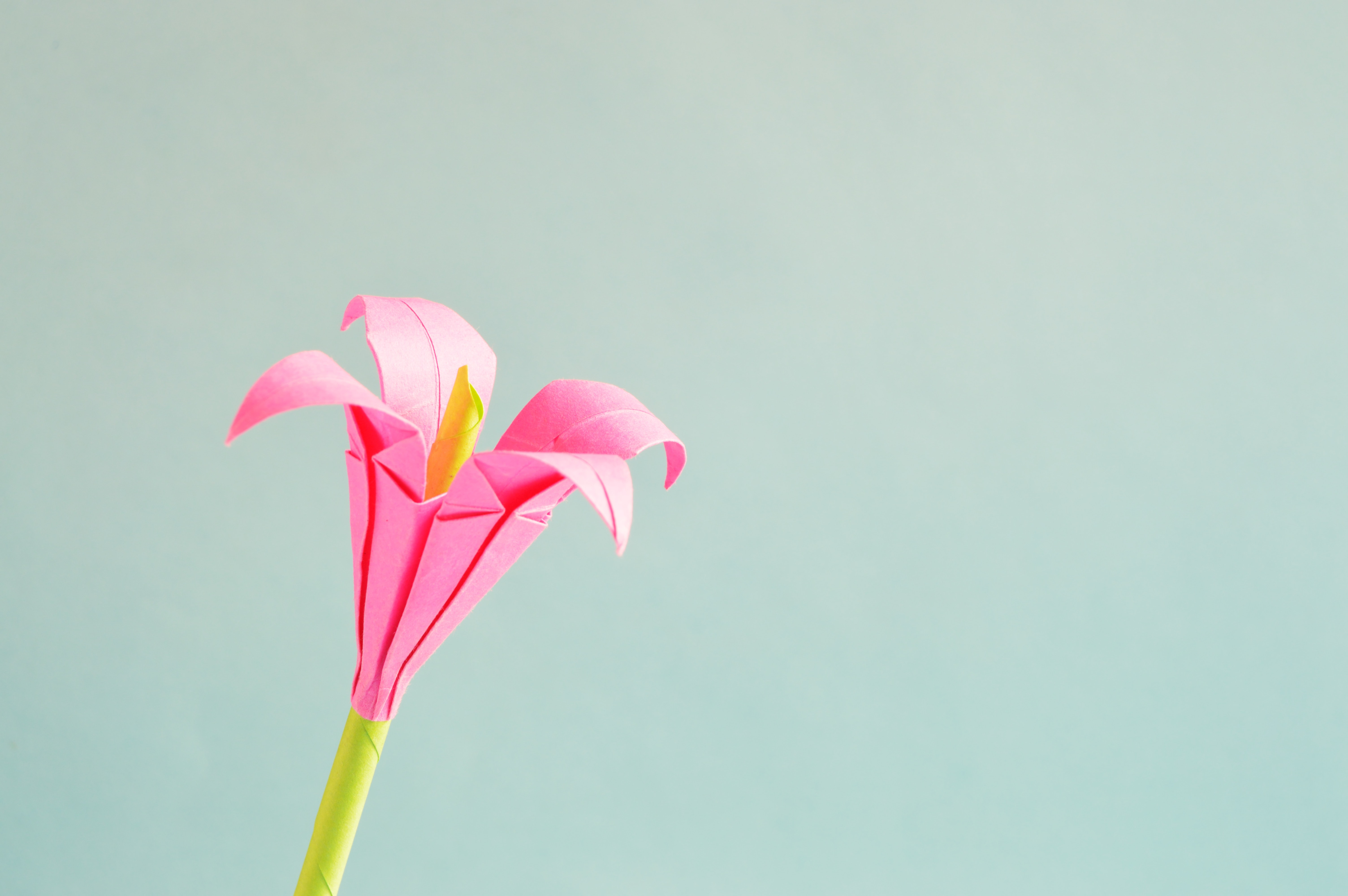 1000 Engaging Origami Flower Photos Pexels Free Stock Photos