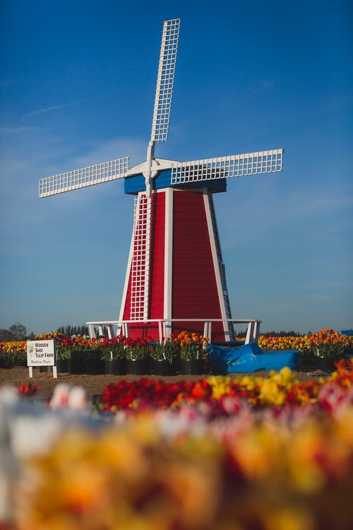 Red, White, and Blue Windmill