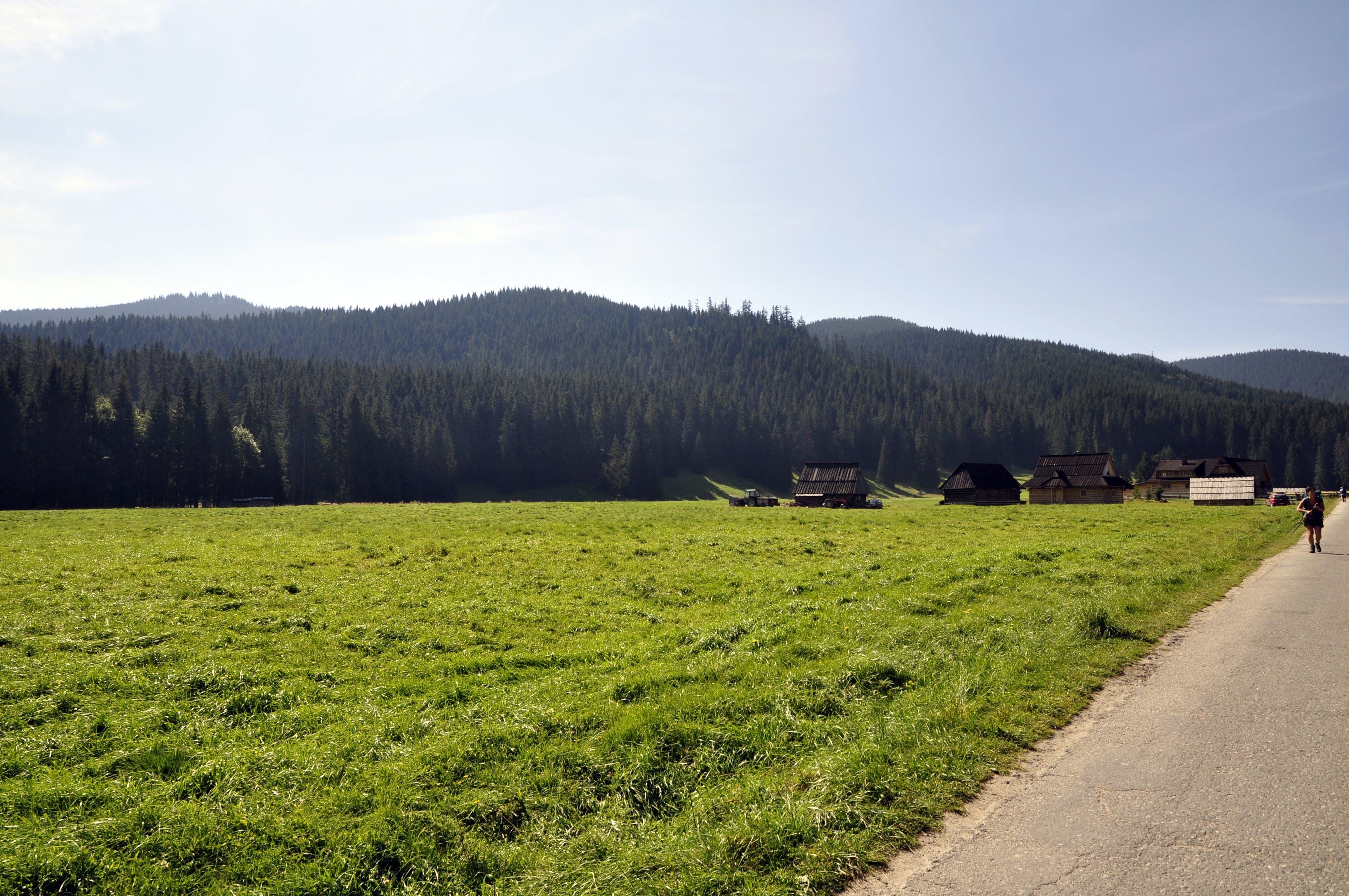 Free stock photo of mountains, field, poland