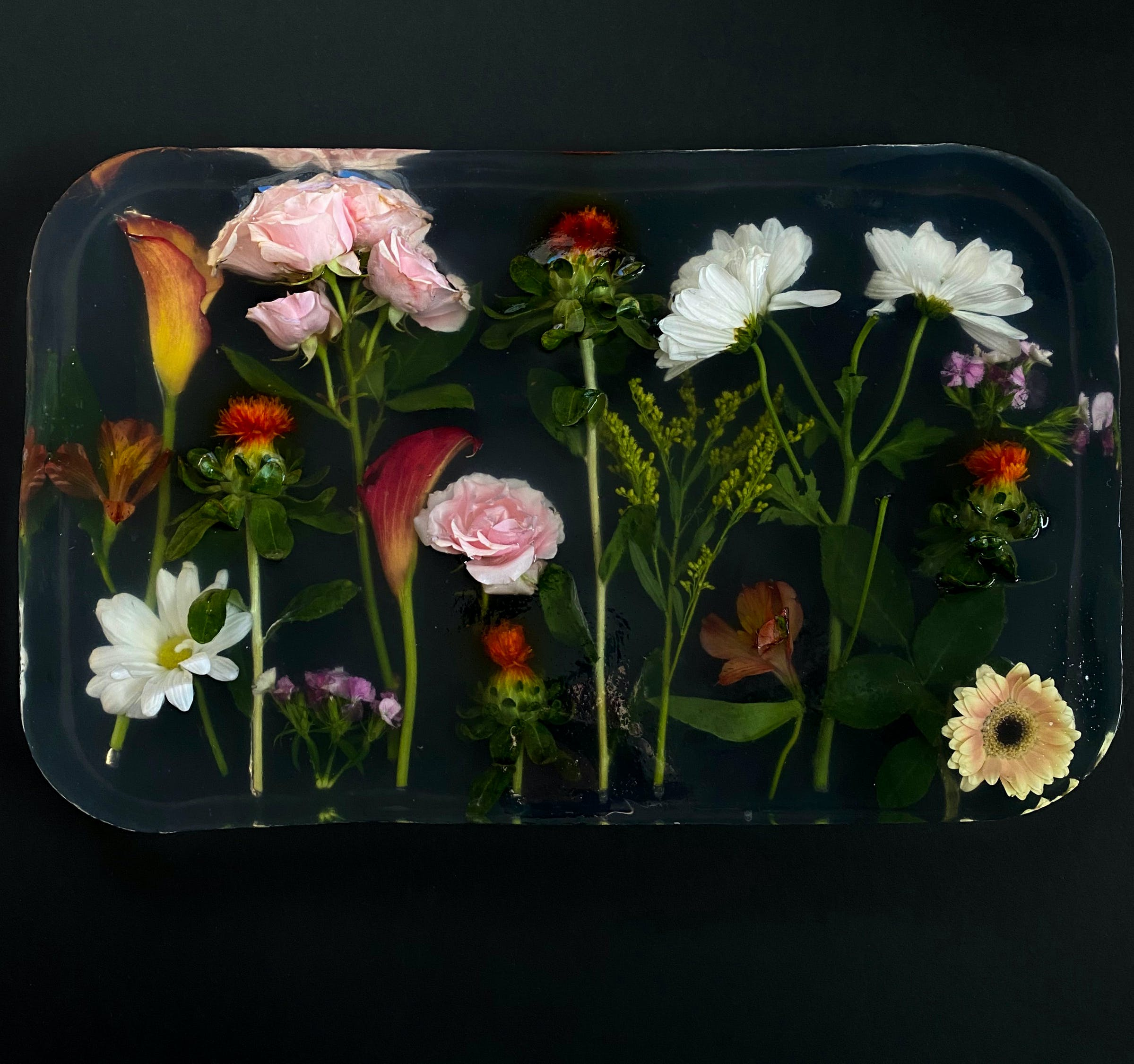 From above of composition of fresh blooming flowers in transparent epoxy resin placed on black surface