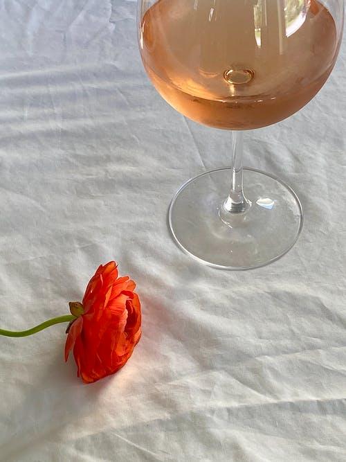 Gratis lagerfoto af alkohol, ark, aroma