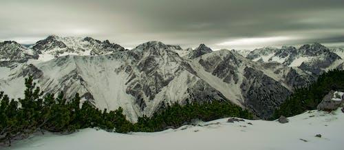 ağaçlar, Alpler, bulutlar, buz içeren Ücretsiz stok fotoğraf