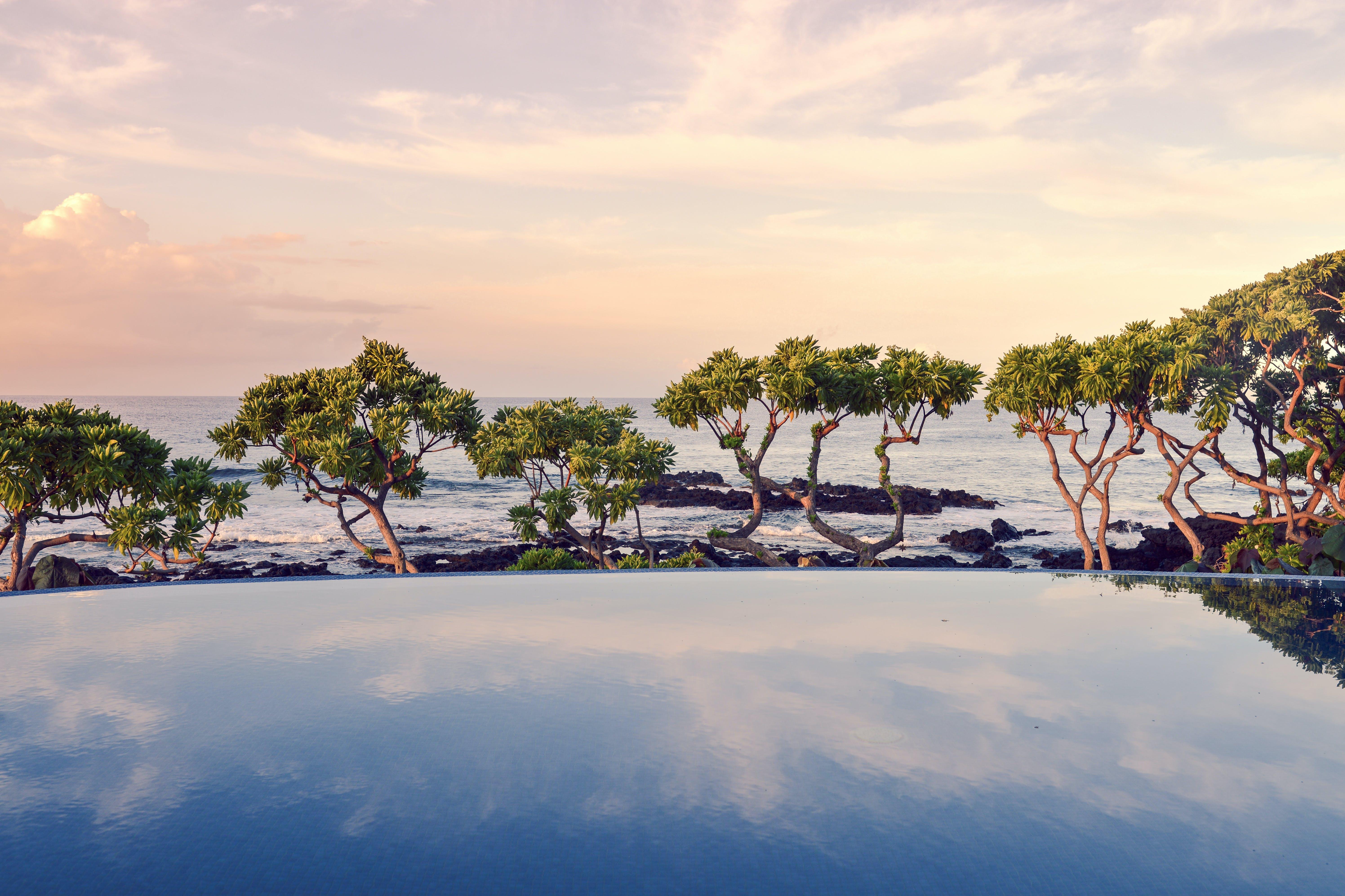 Free stock photo of sea, swimming pool, tropical