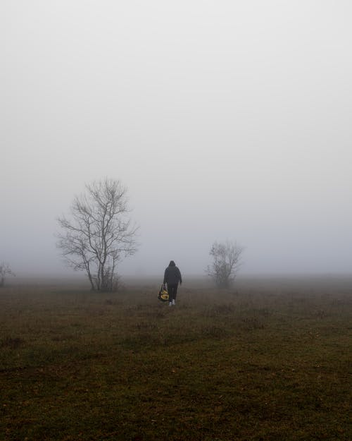 Person in Black Jacket Walking on Green Grass Field during Foggy Weather