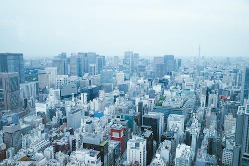 Immagine gratuita di città, edifici, giappone