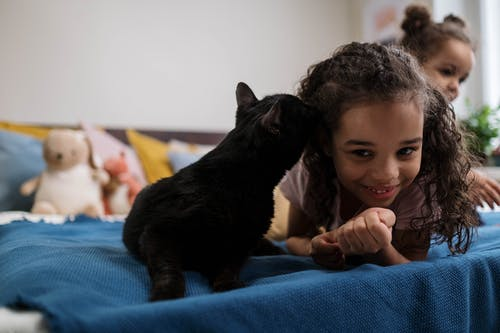 Black Cat Kissing Girls Head