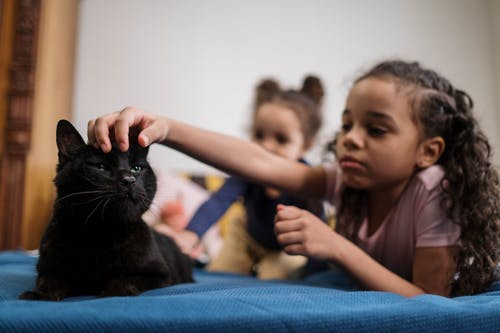 Kids Lying On Bed with Black Cat