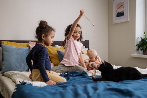 Kids Playing with Black Cat