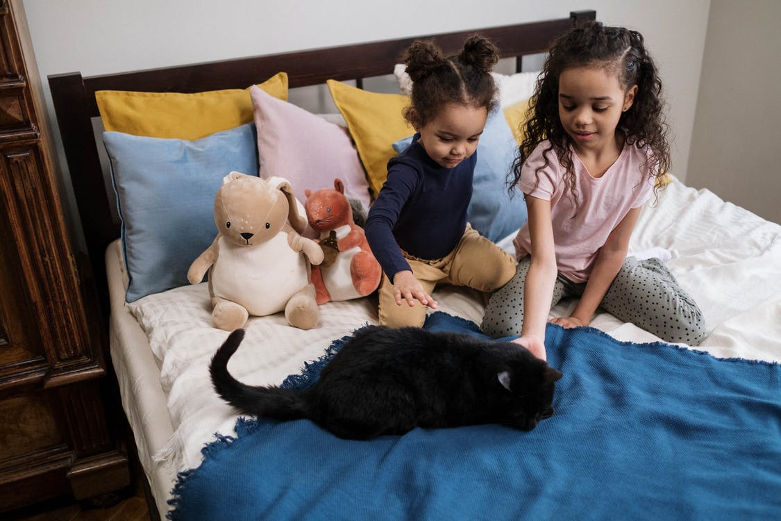 Kids on Bed with Black Cat