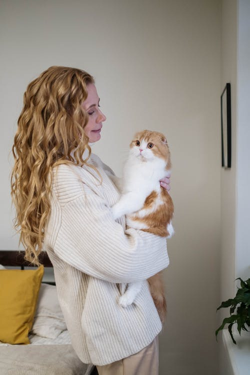 Woman in White Long Sleeve Shirt Holding White and Orange Cat