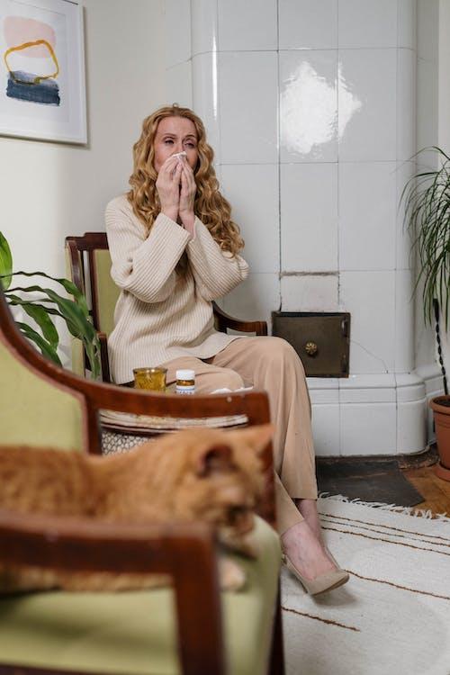 Immagine gratuita di allergia, allergico, amante degli animali