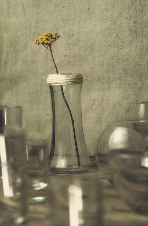 Безкоштовне стокове фото на тему «вази, вертикальні постріл, жовта квітка»