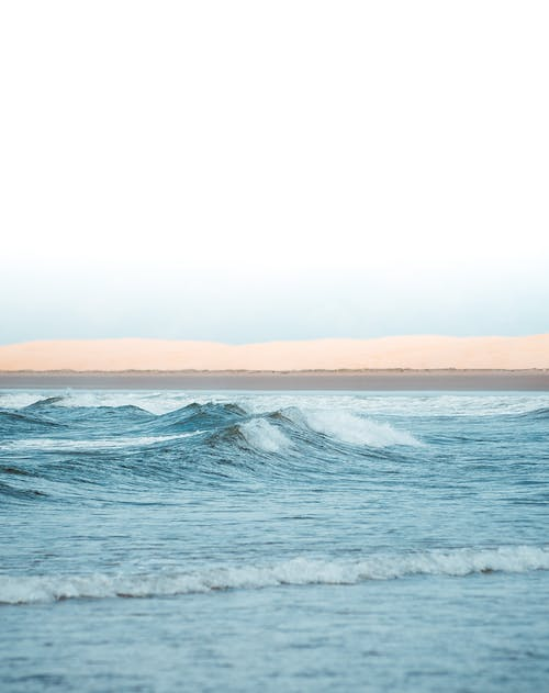 Photos gratuites de aube, bord de mer, brouillard