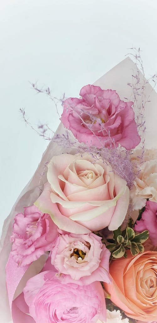Bunch of fresh colorful roses in white studio