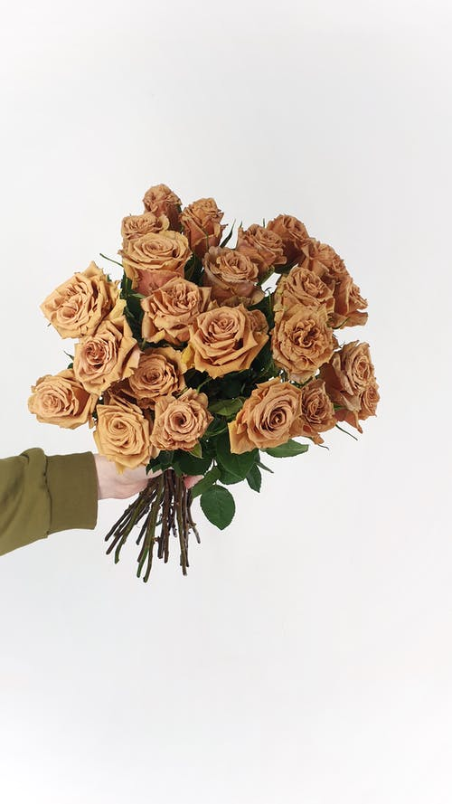 Person showing bouquet of roses in studio