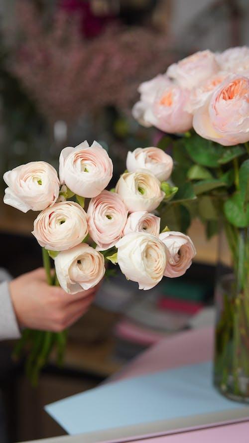 꽃, 꽃무늬, 꽃병의 무료 스톡 사진