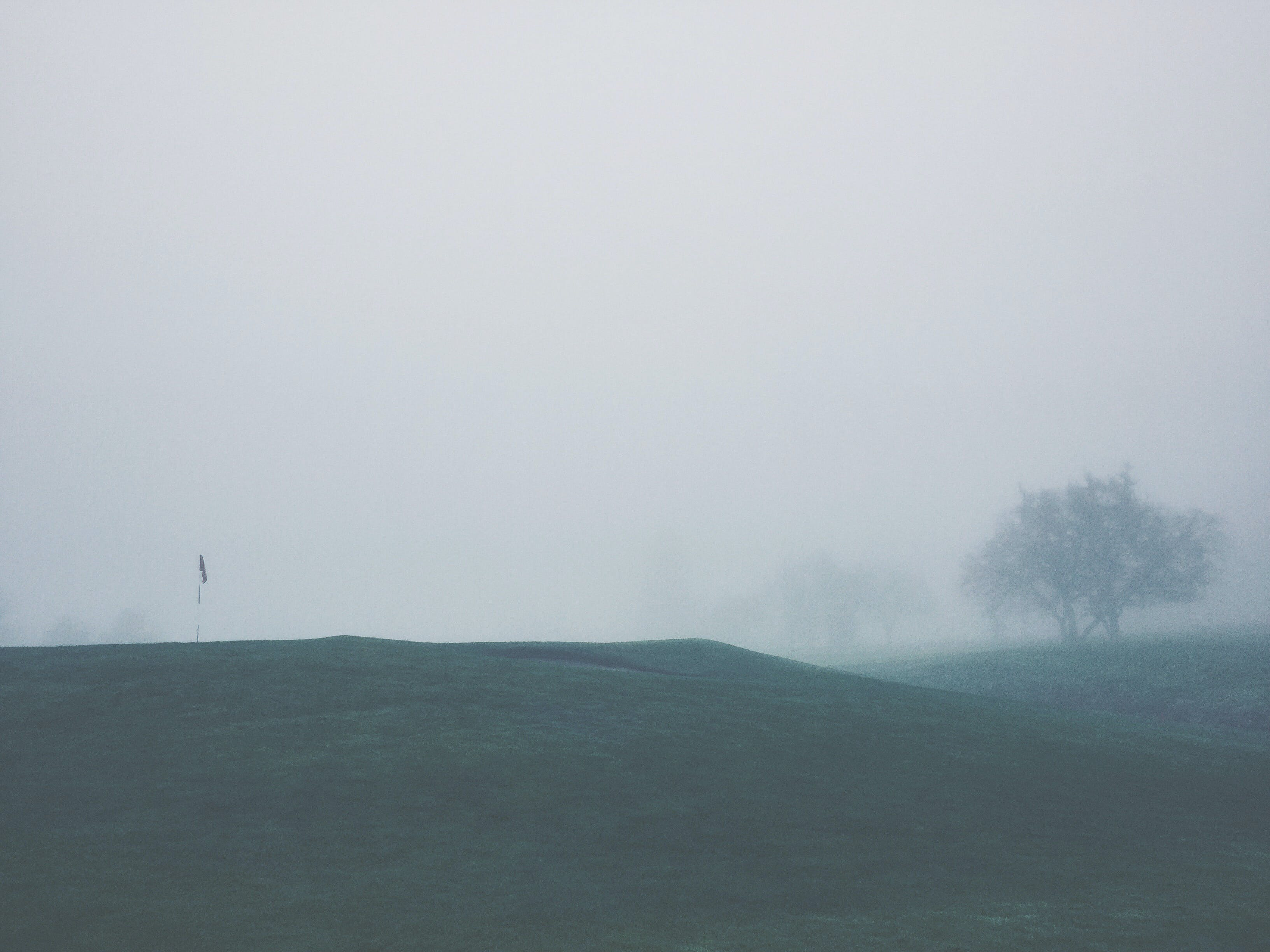 fog, foggy, golf