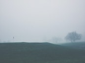 landscape, fog, foggy