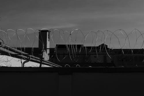 Free stock photo of freiheit, gefängnis, gitter