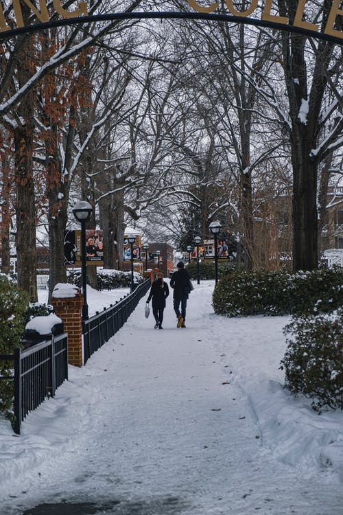 Free stock photo of cold, couple, couple walking