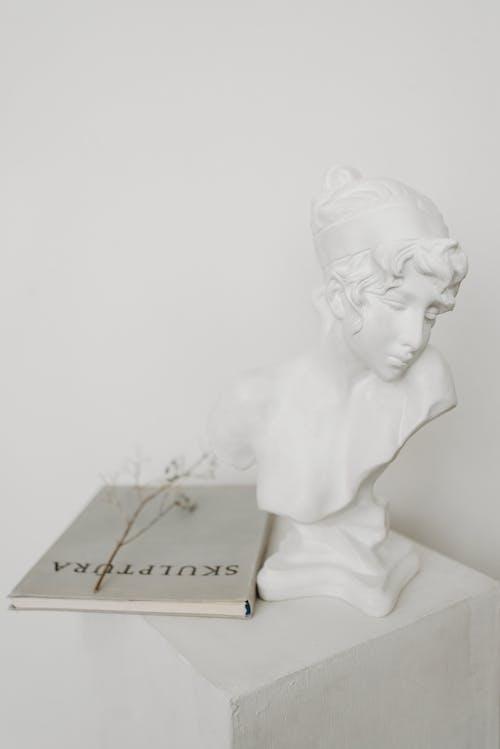 Бесплатное стоковое фото с белая керамика, белый фон, бюст