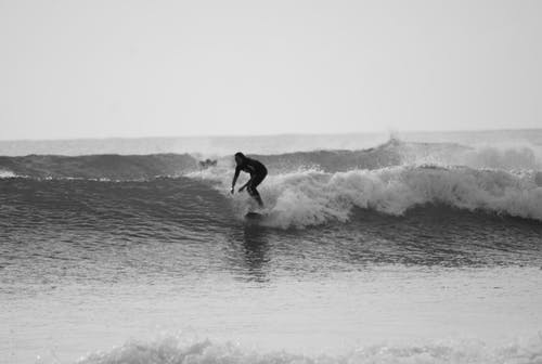 Free stock photo of black and white, surfing