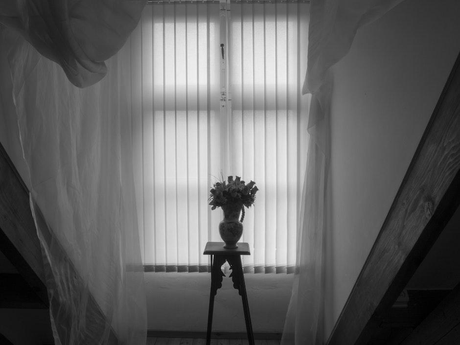 beautiful flowers, black and white, interior