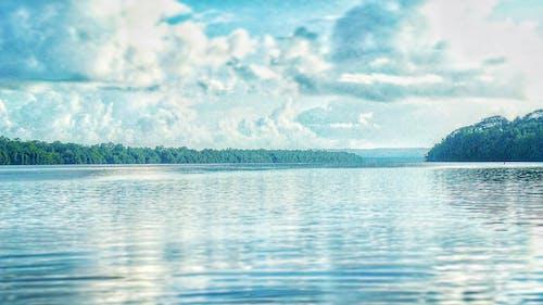 天性, 天空, 岸邊, 思考 的 免費圖庫相片