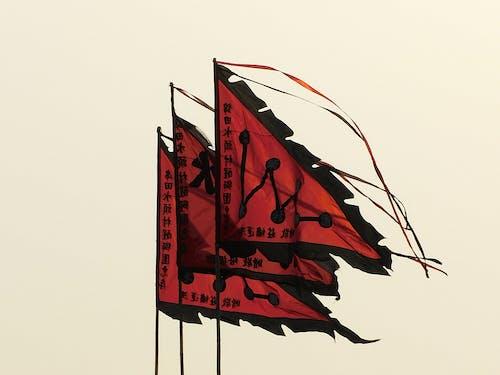 Red and Black Dragon Illustration