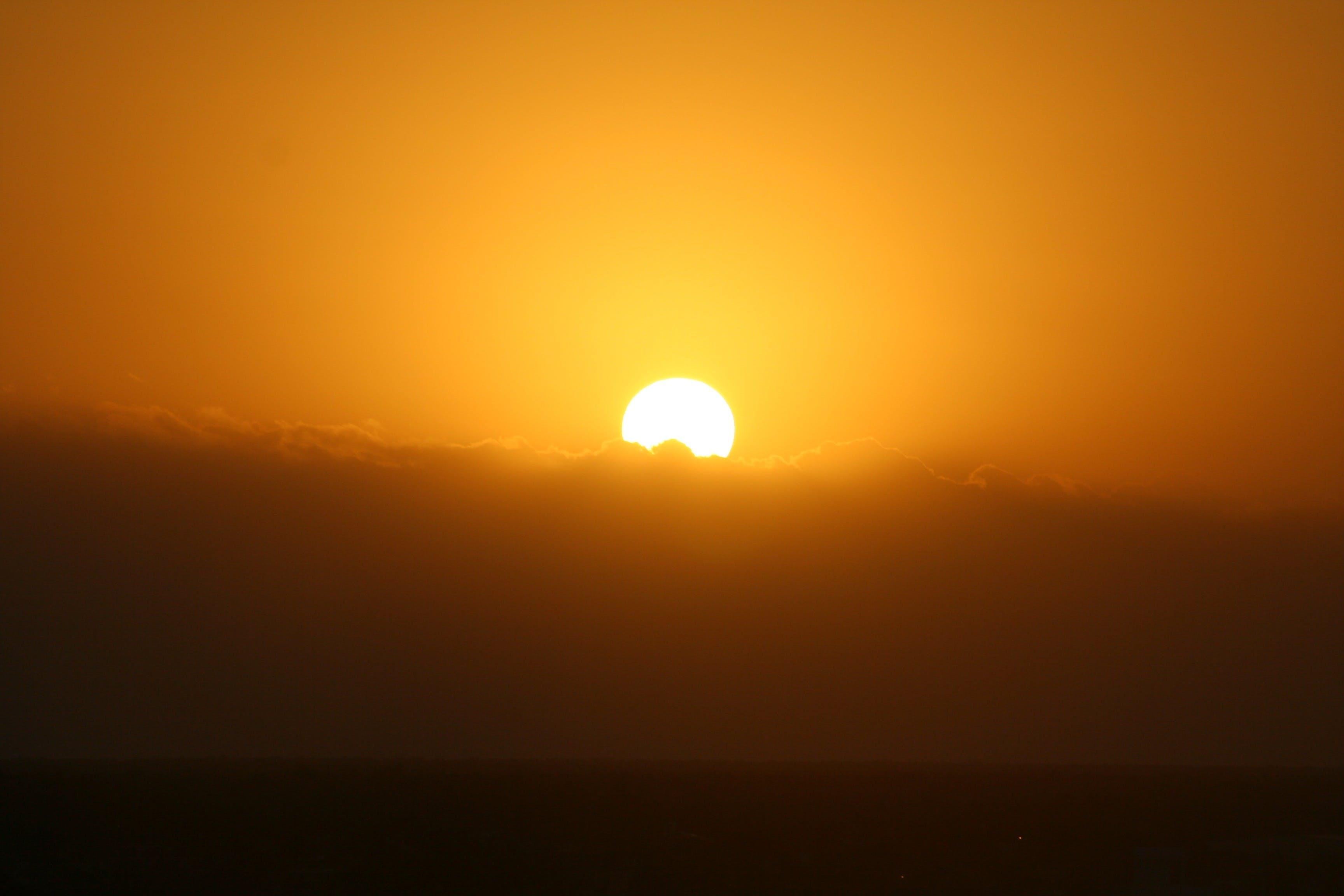 Foto d'estoc gratuïta de atractiu, calor, clareja, cremant