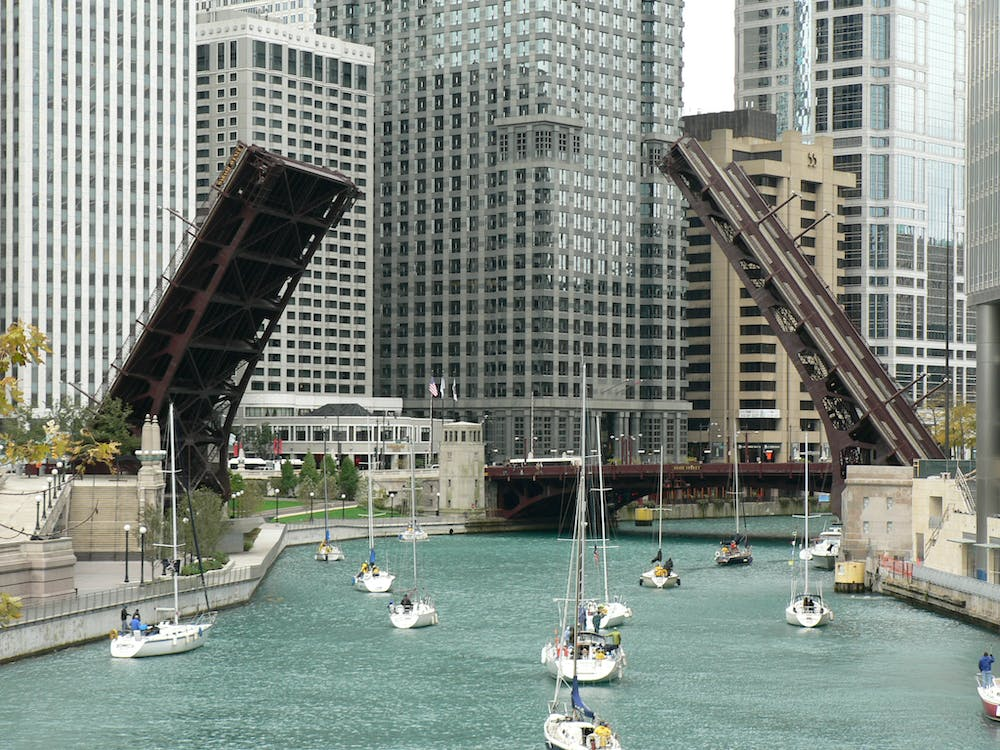 Free stock photo of chicago