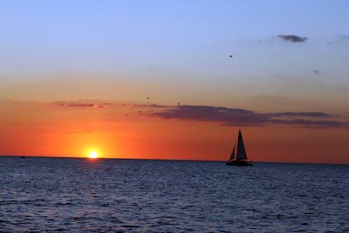 Free stock photo of boat, Mexican Golf, sea, sun