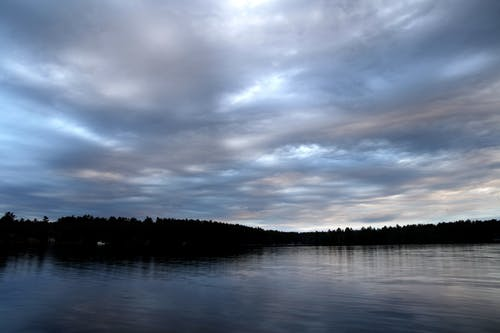 Ảnh lưu trữ miễn phí về bầu trời, cây, những đám mây, Nước