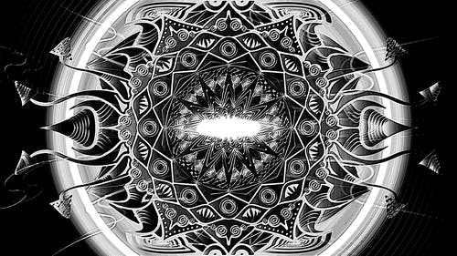 Free stock photo of drawing, grey, mushroom