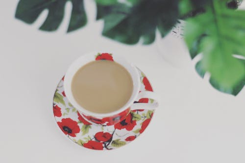Free stock photo of coffee, cup, flower, nature