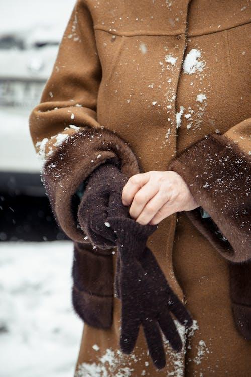 Foto profissional grátis de abrigo, agasalho, andar