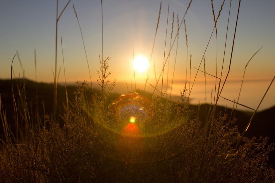 lens flare, sunrise, sunset