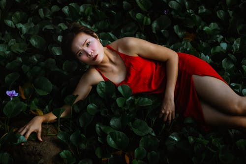 Ethnic female near plants with leaves in nature