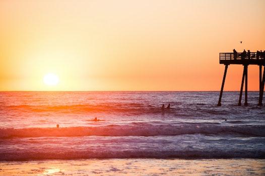 Free stock photo of sea, sunset, beach, summer