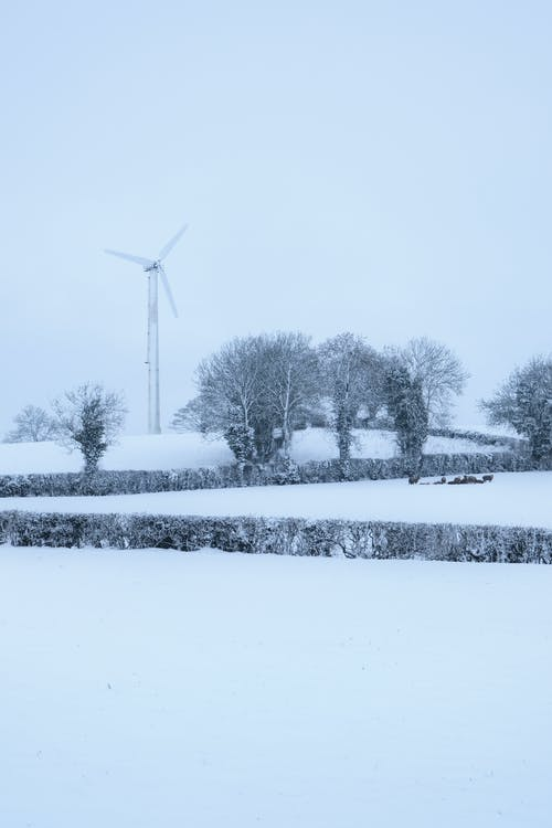 Wind Turbine Near Trees on Snow Covered Ground