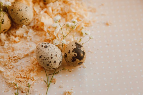 Close-up Photo Of Quail Eggs With Flowers