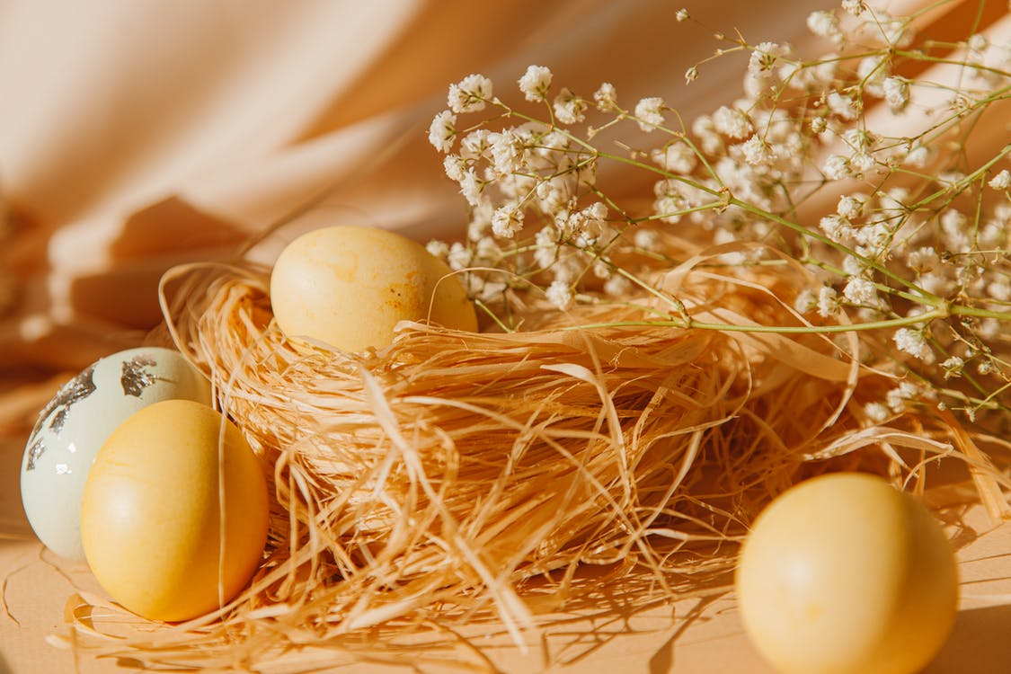 Colored Eggs Near A Nest
