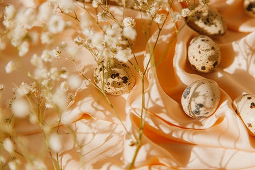 Quail Eggs On Peach Textile