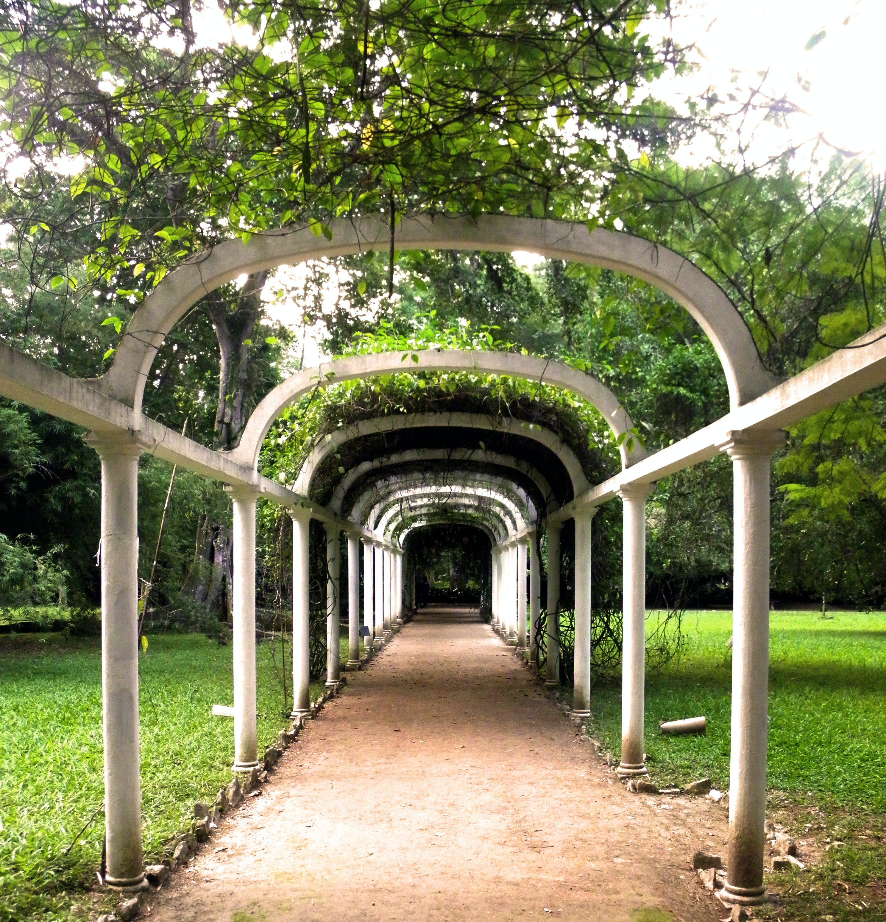 Free stock photo of arches, architecture, green