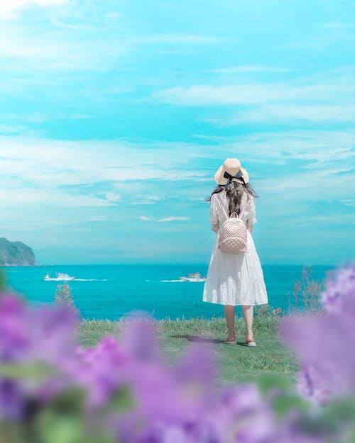 Δωρεάν στοκ φωτογραφιών με ακτή, άνοιξη, γκρεμός