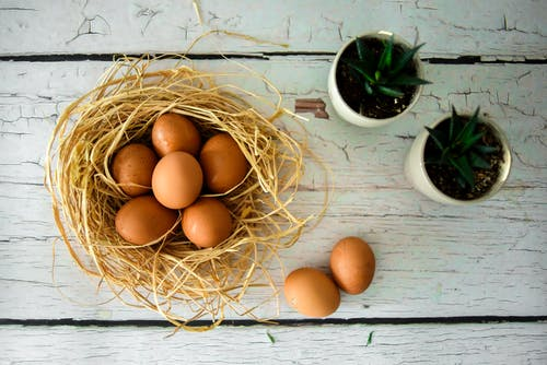 Brown Eggs on Brown Nest
