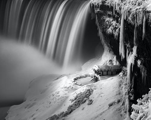 H2O, 가을, 감기의 무료 스톡 사진